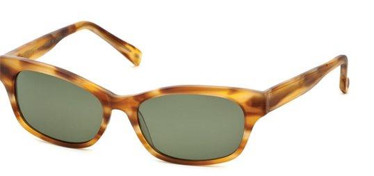 Bevel Cosmic Ray 7705 Sabae Tortoise sunglasses