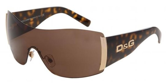 D&G DD8039 502/73 Havana Brown sunglasses