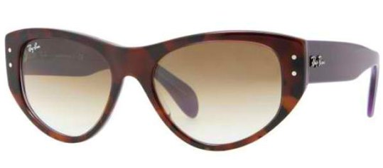 Ray Ban RB4152 106651 Dark Havana Plum Brown Shaded sunglasses